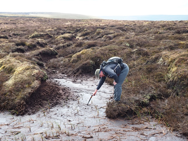 Stuart using a walking pole to test the depth of the peat