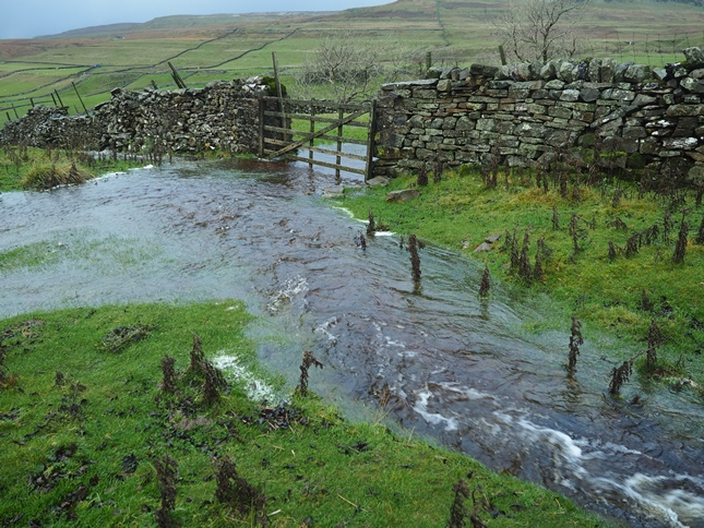 We had to ford a number of streams which had formed due to the heavy rainfall