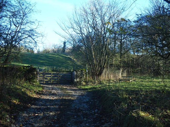 To visit the waterfalls of Foss Gill leave the bridleway on a thin path passing the bench