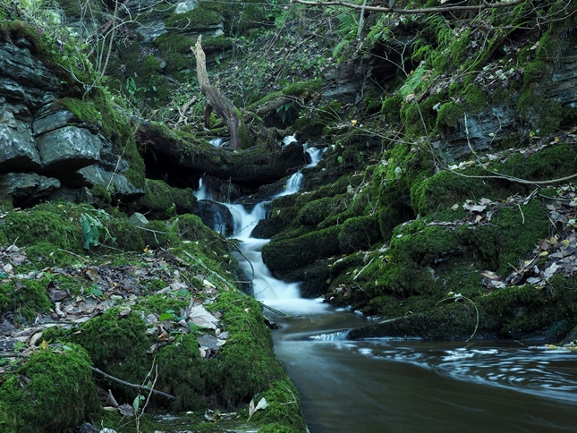 Another modest fall just below Calton Spout