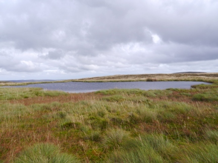 The small tarn that is the source of Fossdale Beck