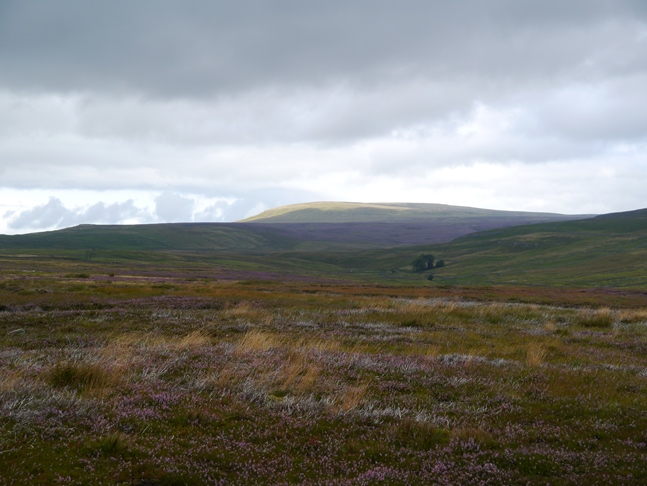 Capplestone Gate and Great Whernside from New Pasture Edge