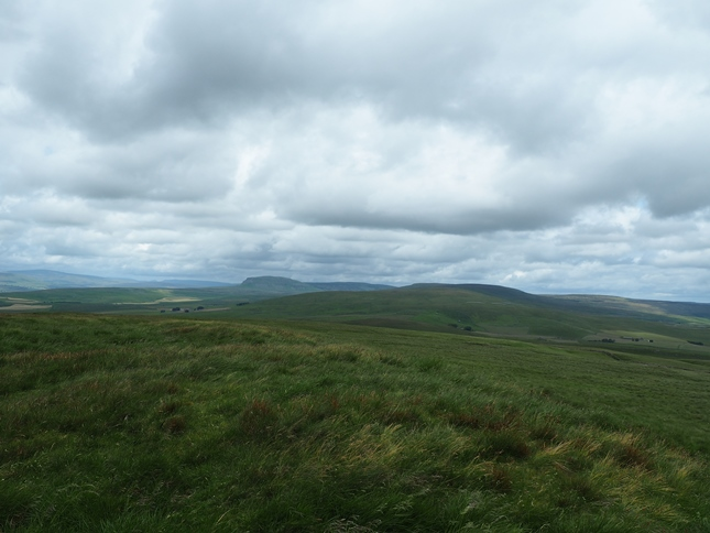The unmarked grassy top of Grizedales looking towards Pen-y-ghent and Fountains Fell