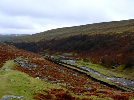 Looking back down to Gunnerside Beck and Birkbeck Wood