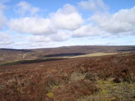 Looking across Hazelwood Moor towards Simon's Seat
