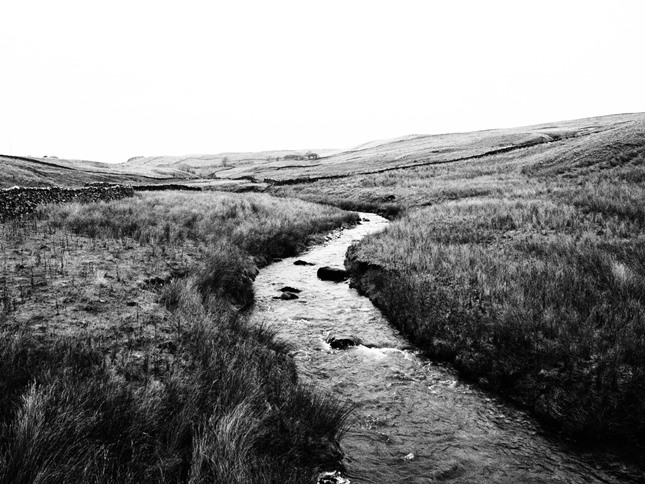 Hetton Common Beck