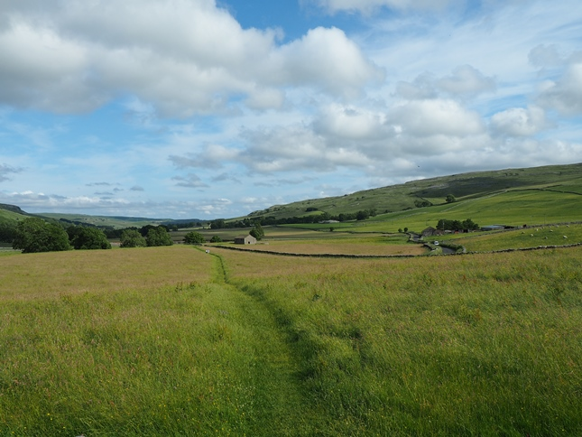 Walking through one of the meadows in Littondale