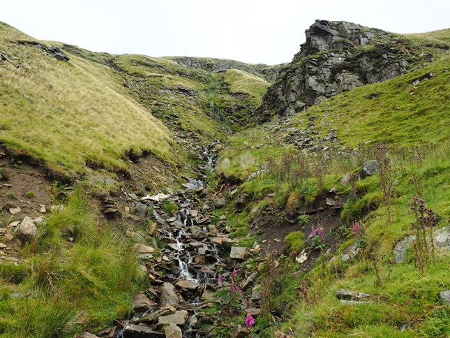 Sloe Brae Gill immediately below Mallerstang Edge