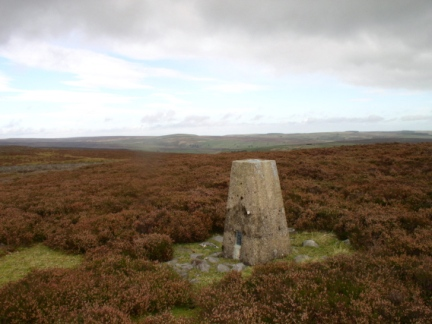 The trig point on Marrick Moor