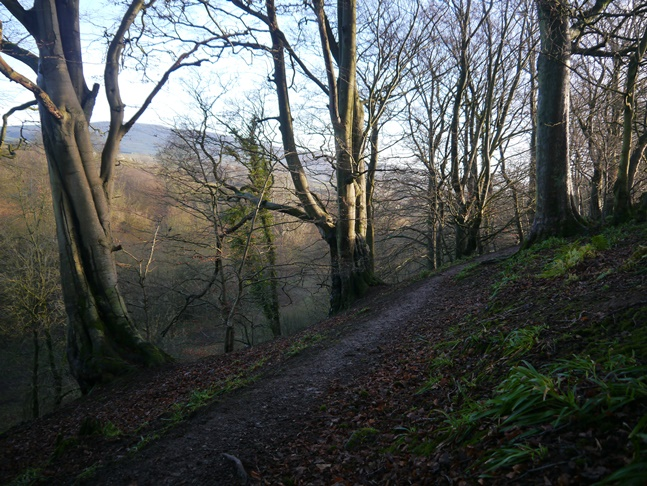 The woodland path above Mill Gill