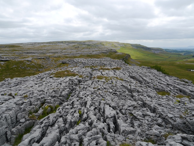 Looking back across another fine example of limestone pavement towards Moughton