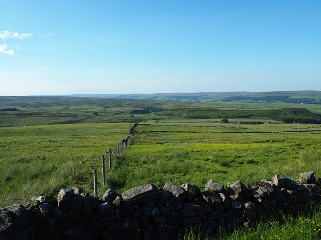 The view of the moors above Nidderdale from the start of the walk