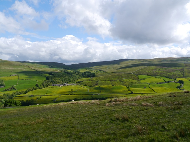 Looking across Swaledale towards Oxnop Common