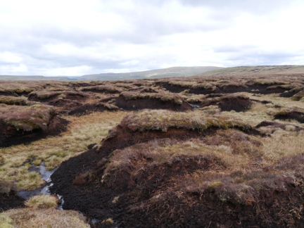Peat hags between Horse Head and Birks Fell
