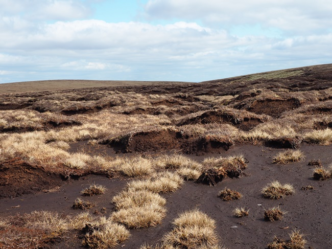 Crossing the peat hags of Backgutter Head