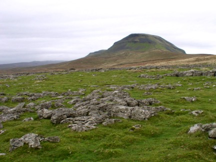Pen-y-Ghent from Dub Cote Scar