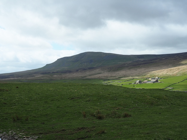 Pen-y-Ghent and Pen-y-Ghent House from Dawson Close