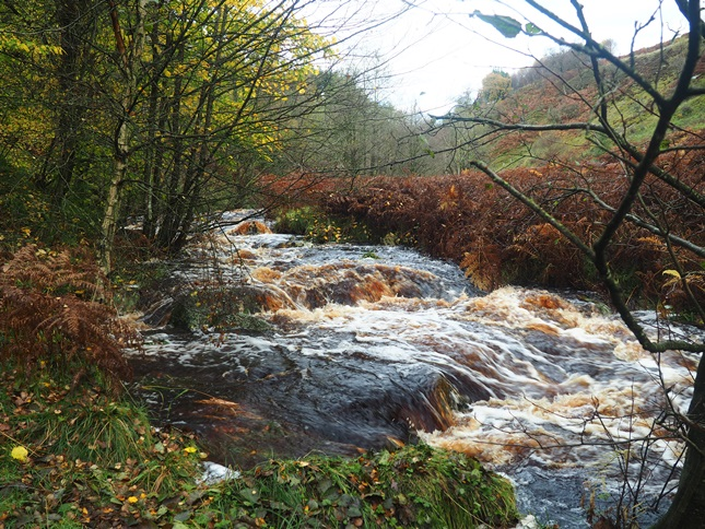 Another shot of Posforth Gill Beck in spate