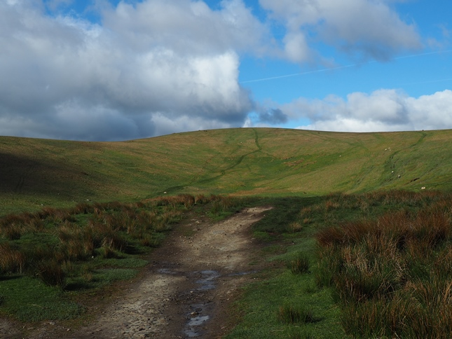 The track on Marsett Ridge looking ahead to Ridge Head Hill