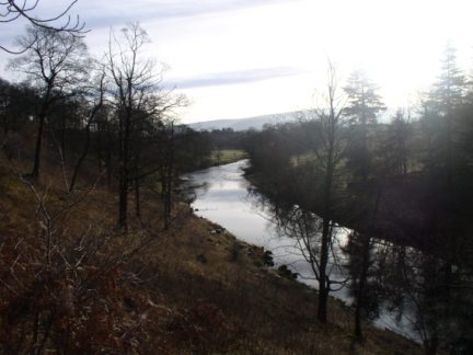The River Wharfe as it flows through Grass Wood