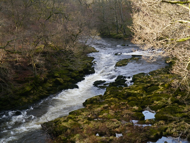 The River Wharfe just above The Strid