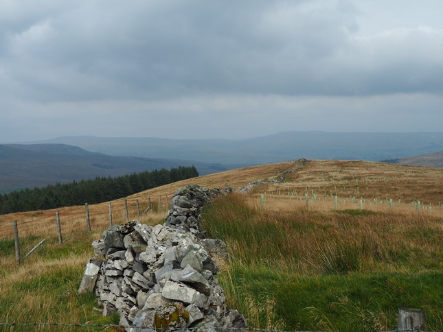 Ultimately I found a way along the crest of the fell by walking between a wire fence and an old wall