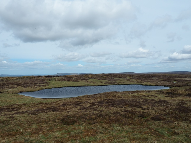 South Grain Tarn