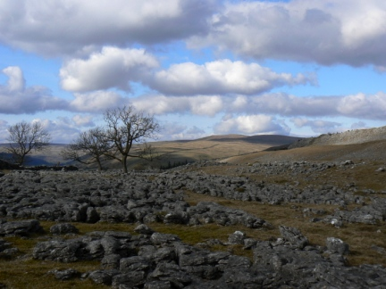 Limestone pavement below Swineber Scar