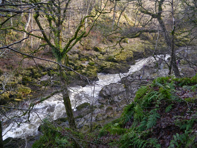 Looking down at The Strid