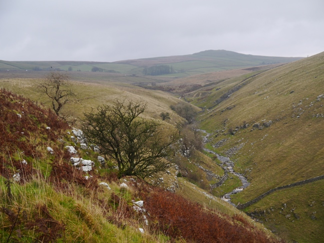 Looking along the upper reaches of Trollers Gill towards Nursery Knot