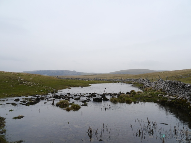Water Sinks where the outflow of Malham Tarn disappears underground