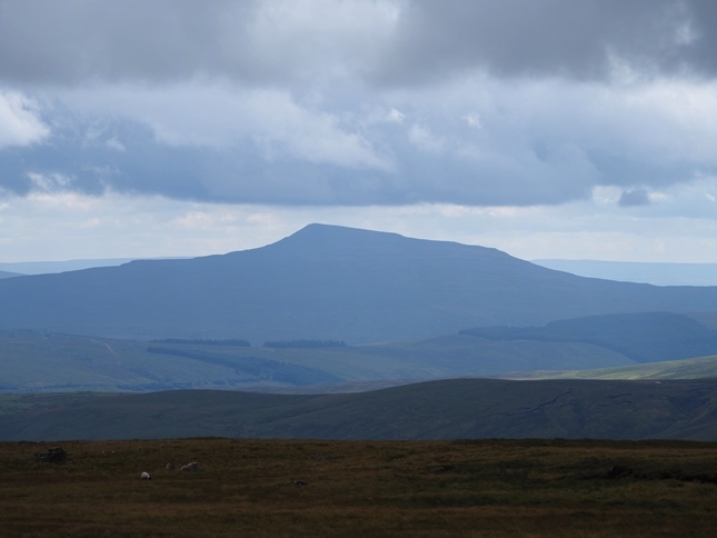A shapely looking Whernside from Archy Styrigg