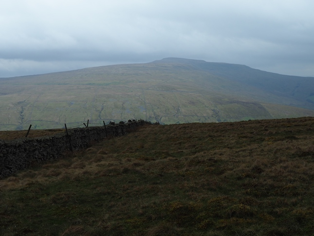 Looking south towards Whernside