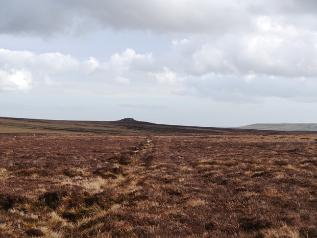 Looking back towards the Wig Stones from Wolfrey Moss