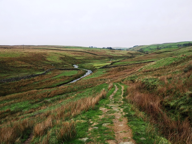 Dropping down to Hetton Common Beck