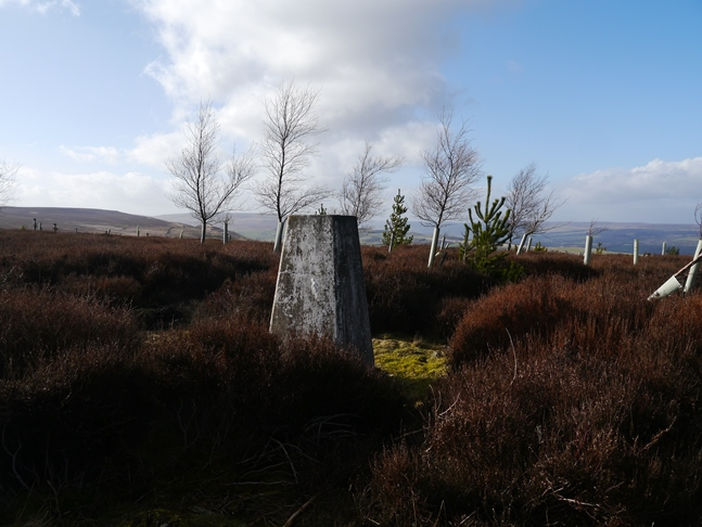 The trig point on Witton Fell
