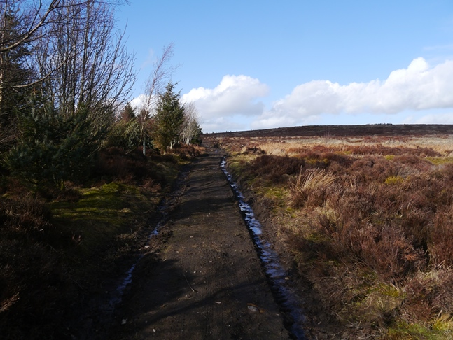 The track leading on to Witton Fell