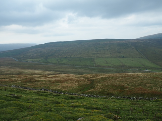 Looking across Widdale Head towards Wold Fell