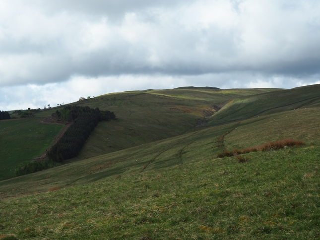 Woldside appearing above the head of New Close Gill