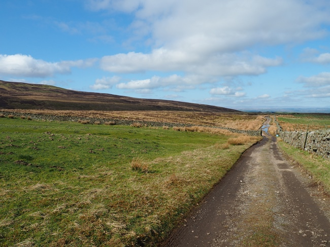 Looking back along the bridleway at the start of the walk