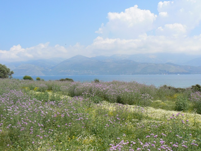 Flower filled meadows, sea and mountains
