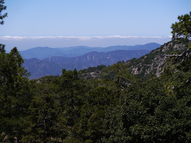 View west across the heavily wooded Troodos Mountains