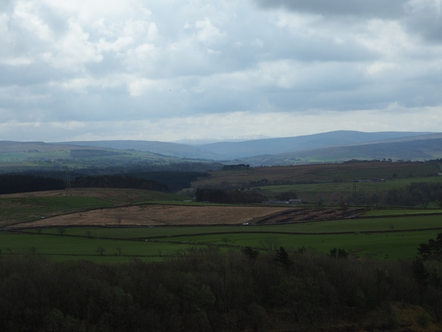 Looking south to Grey Nag above South Tynedale