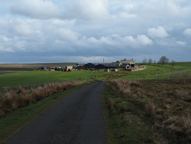 Walking along the minor road towards High Old Shields