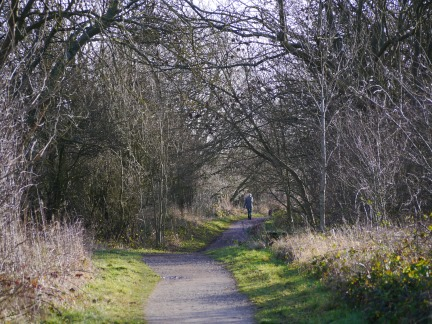The Harland Way
