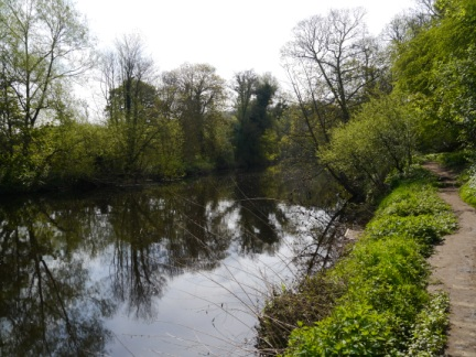 The River Nidd