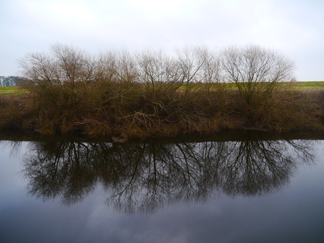 Reflections in the River Swale