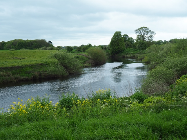 Another view of the River Ure