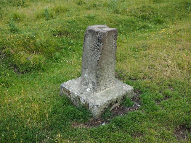 An unusual stone pillar alongside the track leading out of Haverah Park