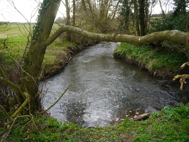 The confluence of Green's Beck and Mill Beck to form Elphin Beck